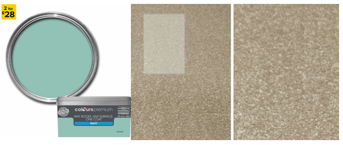 paint-and-carpet.png