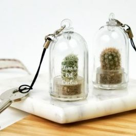 personalised mini cactus keychain