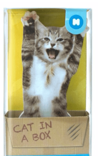 cat in box post-its